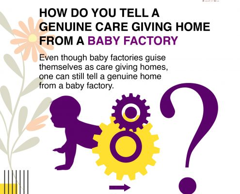 How to identify a genuine care giving home from a baby factory